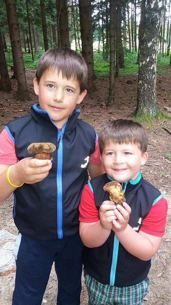 Rodina Potužákových ze Sušice našla pěknou úrodu hub.