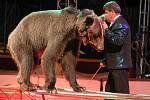 Cirkus Humberto v Klatovech.