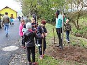 Stromkové slavnosti v Bolešinech