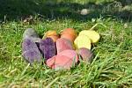 Velikonoční brambory z bramboromatu ve Velharticích.