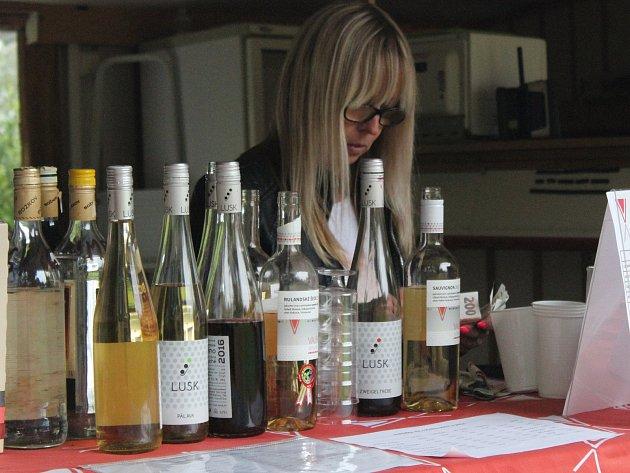Vinobraní v Dolní Lhotě.