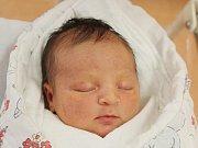 Dora Hradská zNovákovic (3920 g, 52 cm) přišla na svět vklatovské porodnici 14. října v16.42 hodin. Rodiče Julie a Daniel přivítali svoji dceru na svět společně. Na sestřičku doma čeká Žofinka (2).
