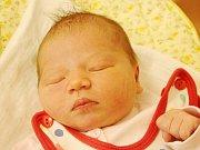 Mia Bertovičová ze Zelené (4100 g, 54 cm) se narodila v klatovské porodnici 22. března ve 3.13 hodin. Rodiče Anna a Vojtěch doufali, že jejich prvorozené dítě bude holčička.