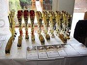 Slavnostní vyhlášení výsledků Petronas Cupu 2017, poháru čtyřkolek pro děti do 15 let, v Kulturním domě Klatovy.