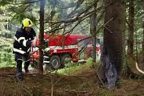 Požár stromu v Národním parku Šumava.