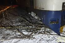 V Železné Rudě najel vlak do stromu