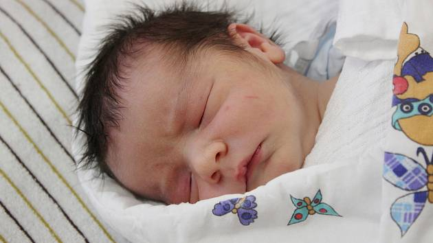 Filip Roman Kraft z Nové Vsi u Kdyně (3770 g, 51 cm) se narodil v klatovské porodnici 25. března v 11.45 hodin. Rodiče Šárka a Milan věděli, že Radeček (4,5) bude mít brášku.