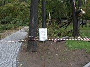 Vítr řádil i na Klatovsku - Mercandinovy sady v Klatovech