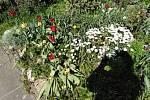 Rozkvetlá zahrada na Klatovsku.