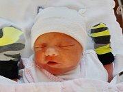 Nela Voláková se narodila 6. března v 15.04 hodin mamince Ivetě a tatínkovi Pavlovi z Přešticka. Po příchodu na svět v plzeňské fakultní nemocnici vážila jejich prvorozená dcerka 3130 g a měřila 51 cm.