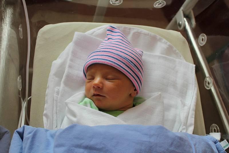 David Helus z Hadačky se narodil 24. září ve 12:35 hodin rodičům Barboře a Ondřejovi. Po příchodu na svět ve FN v Plzni vážil bráška čtyřletého Adámka 3250 g a měřil 50 cm.