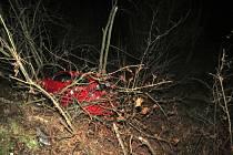 Sobotní nehoda u Kocourova.