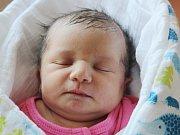 Anežka Hájková z Borov (3180 g, 48 cm) se narodila v klatovské porodnici 14. února v 5.00 hodin. Z narození prvorozené dcery mají radost maminka Jana a tatínek Zdeněk. Na svět ji přivítali společně.