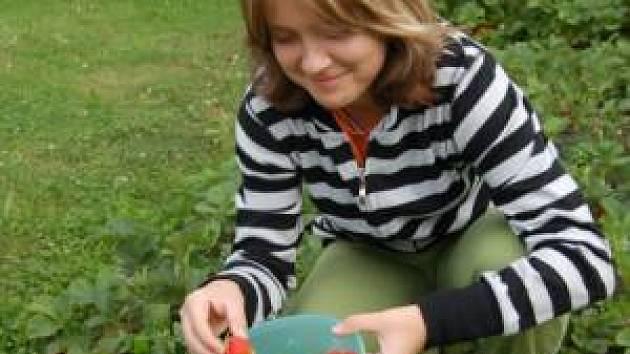 Z velkého množství jahůdek na zahradě má radost i Terezka Petrovská z Měčínska
