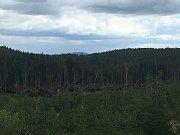 Polomy po páteční bouřce na území NP Šumava v okolí Stožce.