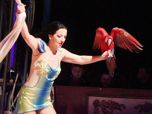 Cirkus Jo Joo v Klatovech