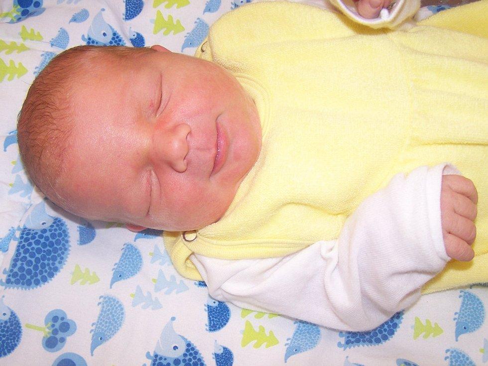 Vojtěch Průcha z Plánice (3790 g, 52 cm) se narodil v klatovské porodnici 5. listopadu v 4.40 hodin. Rodiče Lenka a Vlastimil si nechali pohlaví miminka jako překvapení na porodní sál, kde syna na svět přivítali společně. Na brášku se doma těší Bára (3 ro