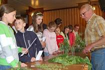 Děti  ze škol z Klatovska soutěžily o titul Mladého zahrádkáře.