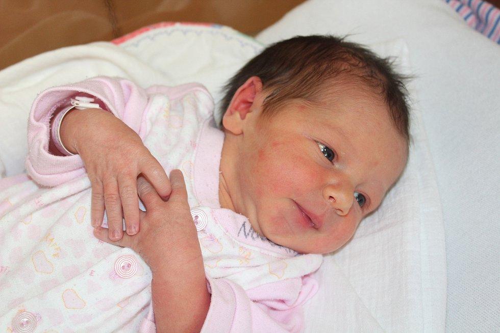 Magdaléna Sazamová z Točníka (2510 g, 46 cm) se narodila v klatovské porodnici 1. srpna v 1.36 hodin. Rodiče Jitka a Jan věděli, že Honzíkovi (4) přinesou domů sestřičku. Foto: Deník/Lucie Kohoutová