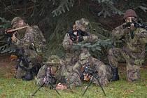 Členové airsoft týmů z Klatovska.