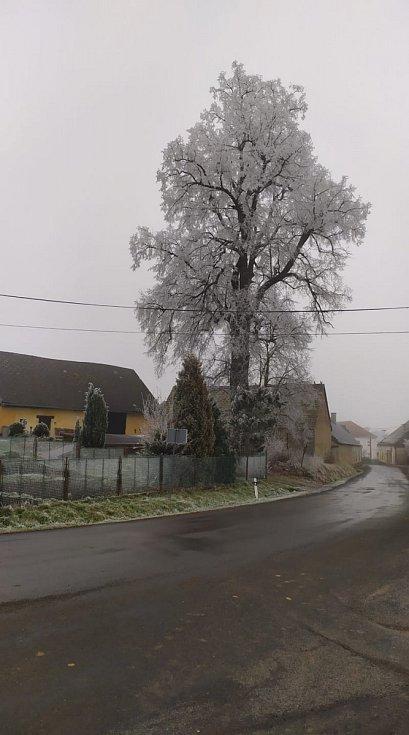 Mrazivé počasí na Klatovsku.