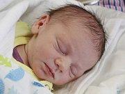 Scarlet Janovová z Janovic nad Úhlavou (2840 g, 47 cm) se narodila v klatovské porodnici 19. dubna v 8.55 hodin. Rodiče Jiřina a Lukáš věděli, že Lukáškovi (1) přinesou domů sestřičku.
