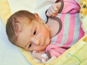 Lenka Dudková z Horažďovic (2730 g) se narodila ve strakonické porodnici 24. května v 9.58 hodin.