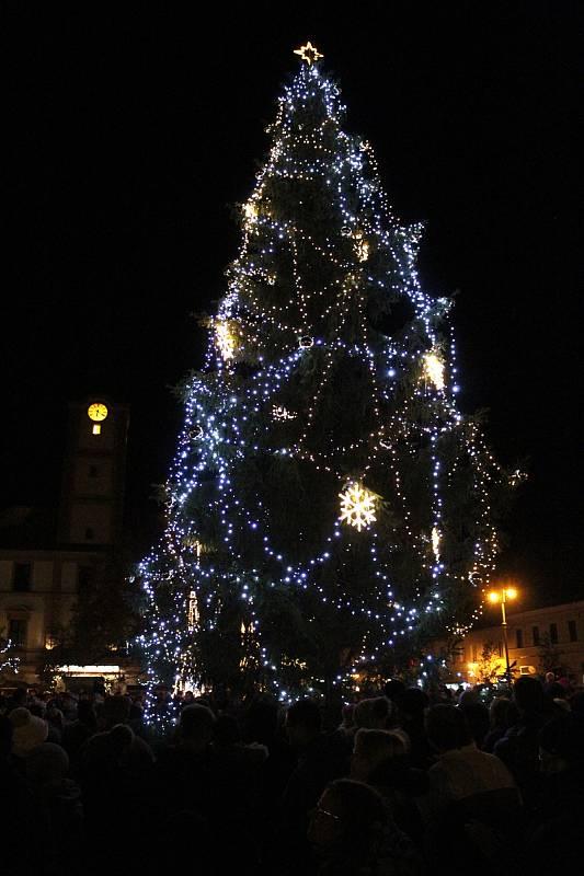 Rozsvícení vánočního stromu v Sušici