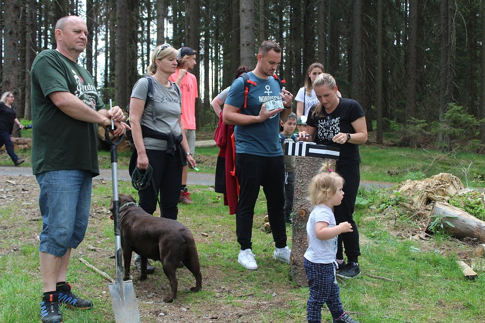 Sázení stromků na Šumavě s WeLoveŠumava 5. června 2021.