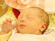 Viktorie Pojarová z Klatov (3100 g, 50 cm) se narodila v klatovské porodnici 22. března v 10.58 hodin. Rodiče Petra a Jan si nechali pohlaví prvorozeného miminka jako překvapení až na porodní sál.