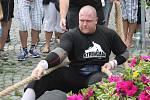 Strongman v Sušici 2014