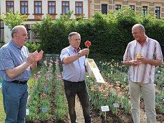 Nové karafiáty věnovali klatovští pěstitelé městům.