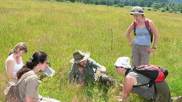 Výpravy s průvodci do šumavské divočiny lákají, místa byla zarezervována krátce po spuštění systému. Snímek je z výpravy do Vltavského luhu, jehož území je jinak velmi přísně chráněno