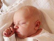 Emma Stuiberová z Děpoltic (3140 g, 48 cm) spatřila světlo světa v klatovské porodnici 16. února ve 14.17 hodin. Z narození dcery se raduje maminka Nikola a tatínek Karel. Pohlaví miminka si nechali jako překvapení.
