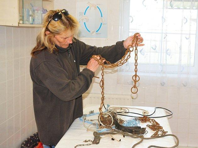 Vedoucí Útulku pro zatoulané a opuštěné psy v Klatovech Miloslava Šeflová ukazuje řetěz, na kterém byl nalezen uvázaný pes