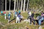 Sázení stromků v rámci projektu WeLoveŠumava.