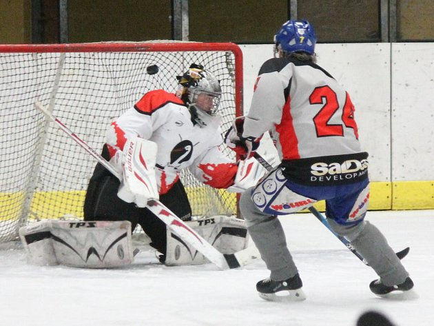 Šumavská liga amatérského hokeje: HC Viziauto (v šedém) - HC Čápi 6:3.