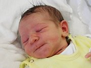 Viktorka Pajerová ze Sušice (2820 g, 49 cm) se narodila v klatovské porodnici 7. března v 18.24 hodin. Rodiče Michaela a Václav přivítali očekávanou dceru na světě společně. Na sestřičku se těší Matyáš (3,5).