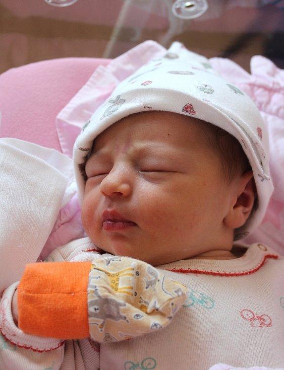 Josefína Jirková se narodila ve FN na Lochotíně 8. září ve 12:23 hodin (3520 g). Rodiče Michaela a Tomáš z Plzně věděli, že jejich prvorozené miminko bude holčička.