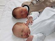 Matyáš (vpravo) a David Reiserovi ze Sušice se narodili Pavle a Stanislavovi v klatovské porodnici 15. května. První na svět přišel David (2750 gramů, 48 cm) v 8.29 hodin, o dvě minuty později spatřil světlo světa Matyáš (3000 gramů, 50 cm).
