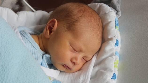 David Pojar z Vojetic se narodil v klatovské porodnici 14. července ve 4:04 hodin (3070 g, 49 cm). Rodiče věděli, že Tomášek (2,5), Ondřej (12) a Matyáš (5) budou mít brášku.