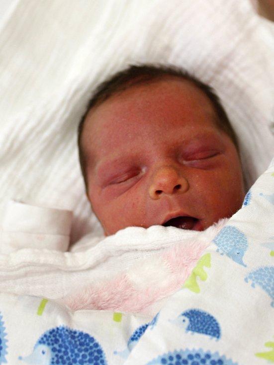 Barbora Holá z Malé Vísky se narodila v klatovské porodnici 22. února ve 14:23 hodin (2590 g, 45 cm). Rodiče Michaela a Michal dopředu věděli, že jejich prvorozeným miminkem bude holčička.