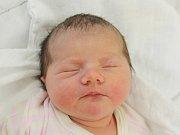 Thea Vítovcová z Běšin (3570 g, 49 cm) uviděla světlo světa v klatovské porodnici 11. prosince v 6.15 hodin. Rodiče Radka a Jindřich přivítali svojí  prvorozenou dceru na svět společně.