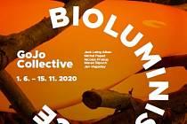 Výstava Bioluminiscence rozzáří galerijní zahradu Pavilonu skla.
