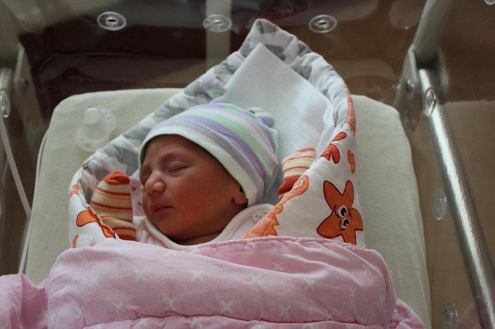 Dvojčata Karina a Cristian Badea se narodila 1. června 2021 mamince Cristině a tatínkovi Cosminovi z Rokycan. Karina se narodila v 11:22, bráška Cristian o tři minuty později. Po příchodu na svět ve Fakultní nemocnici v Plzni na Lochotíně vážila prvorozen