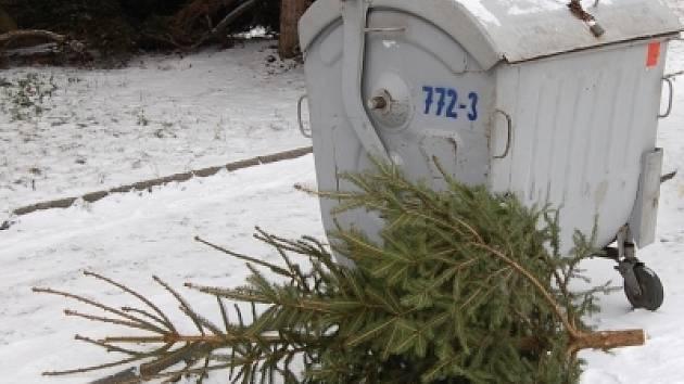 Včera byl ještě okrasou obývacích pokojů, dnes leží holý u popelnic. Skončily vánoční svátky.