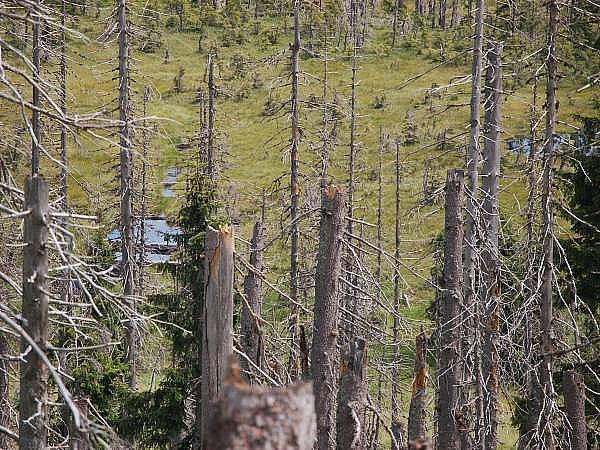 Šumava, Modrý sloup, ilustrační foto