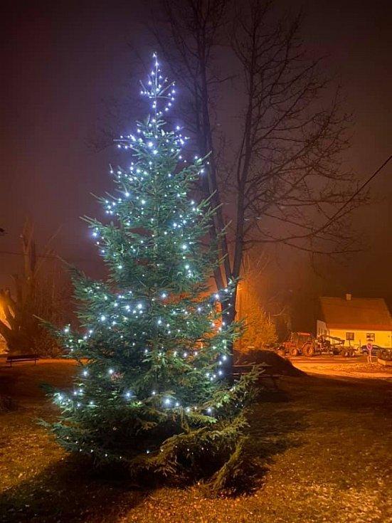 Vánoční strom v Hojsově Stráži.