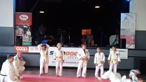 Judoclub Sušice při vystoupení v PDA.