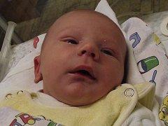 Karel Herrman z Nýrska se narodil v klatovské porodnici 20. února v 18.28 hodin rodičům Petře a Karlovi. Vážil 3320 gramů a měřil 50 cm.